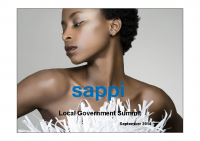 Presendial Local Government Summit Presentation – Sappi